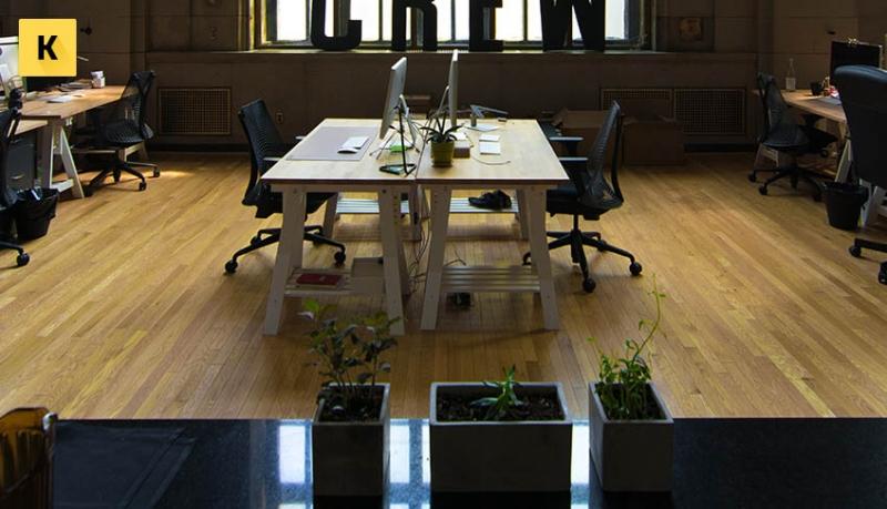 Что такое фирма-однодневка – признаки и ответственность за создание