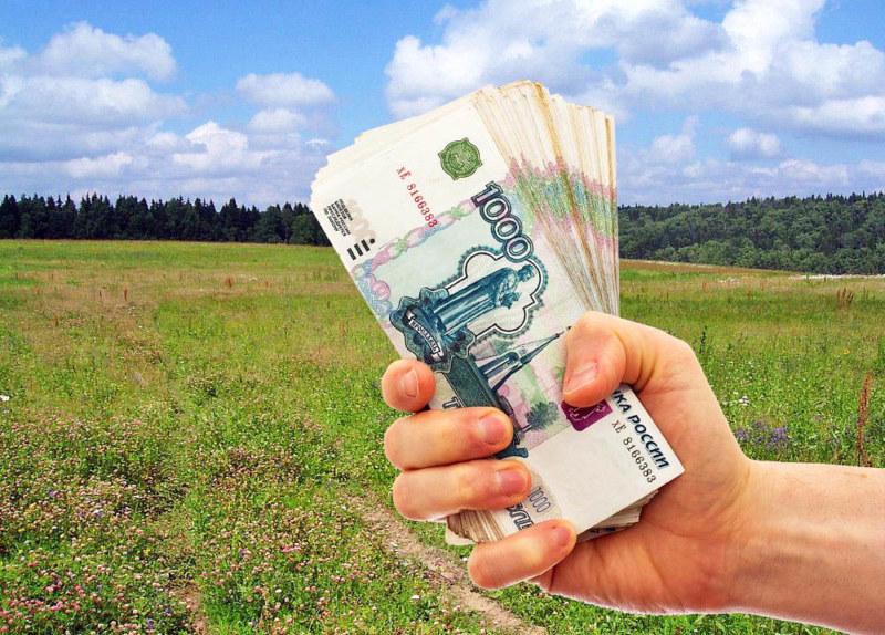 Как заработать деньги на своем участке земли и на инвестициях в землю + какой доход можно получить